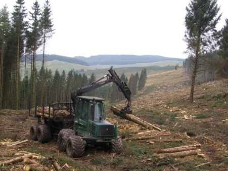 Forwarder on hill