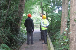 Council workers wearing personal protective equipment in a woodland